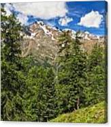Trentino - Pejo Valley On Summer Canvas Print