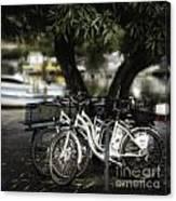 Tres Bikes Canvas Print
