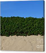 Tri-color At The Beach Canvas Print