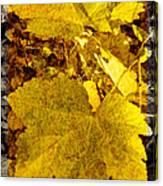 Tribute To Autumn Canvas Print