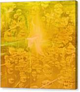 Tribute To Dew Canvas Print