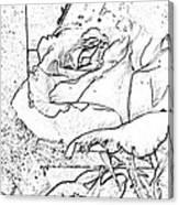 Tricia's Rose Dm  Canvas Print