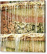 Trickle-down Effect Canvas Print