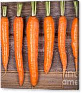 Trimmed Carrots In A Row Canvas Print