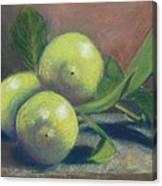 Trio Of Lemons Canvas Print