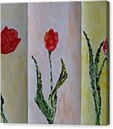 Trio Of  Red Tulips Canvas Print