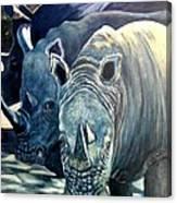 Trio Of Rhino Canvas Print