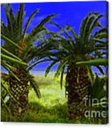 Tropical Beach Light Hdr Effect Canvas Print