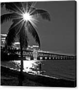 Tropical Bridge In Black And White Canvas Print