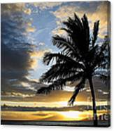 Tropical Dreams Canvas Print