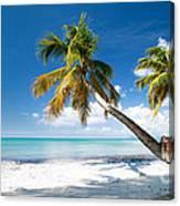 Tropical Escape Canvas Print