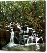 Tropical Falls Canvas Print
