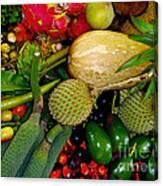 Tropical Fruits Canvas Print