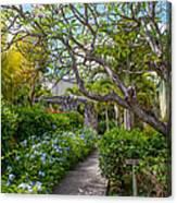 Tropical Garden. Mauritius Canvas Print
