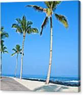 Tropical Island Beach And Sidewalk Art Prints Canvas Print