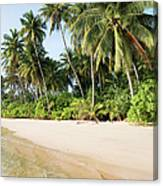 Tropical Island Beach Scenery Canvas Print