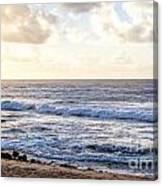 Tropical Morning  Canvas Print