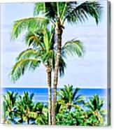 Tropical Palm Trees In Hawaii Canvas Print