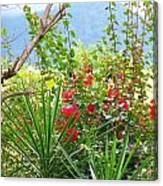 Tropical Red Against Cool Mountain Mists Canvas Print