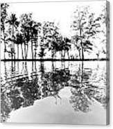 Tropical Reflections Canvas Print