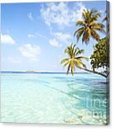 Tropical Sea In The Maldives - Indian Ocean Canvas Print