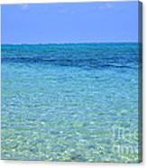 Tropical Seascape Canvas Print