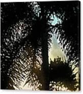 Tropical Silhouette Canvas Print
