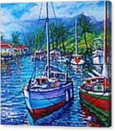 Tropical Splender Canvas Print