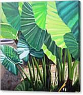 Tropical Translucence Canvas Print