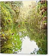 Tropical Treasure Canvas Print