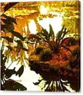 Tropical Water Garden Canvas Print