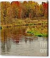 Trout Stream II- Textured Canvas Print