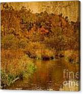 Trout Stream Textured Canvas Print