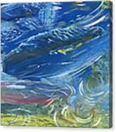 Trout Swirls Canvas Print