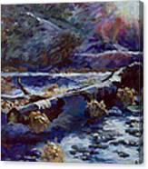 Truckee River Snow Tree Canvas Print