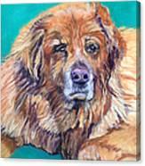 True Companion Canvas Print