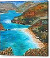Trunk Bay Canvas Print