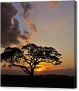Tsavo Sunset Canvas Print