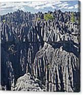 Tsingy De Bamaraha Madagascar Canvas Print