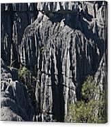 Tsingy De Bemaraha Canvas Print