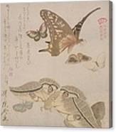 Tsubasa Ni Wa... From The Series Canvas Print