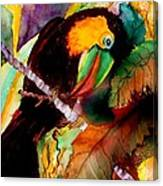 Tu Can Toucan Canvas Print