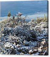 Tucson Covered In Snow Canvas Print