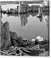 Tufa In Black And White Canvas Print