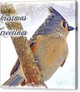 Tufted Titmouse Christmas Card Canvas Print