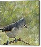 Tufted Titmouse With Decorations Canvas Print