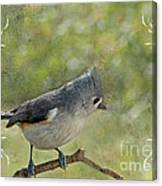 Tufted Titmouse With Decorations II Canvas Print