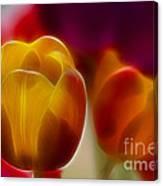 Tulip-7016-fractal Canvas Print