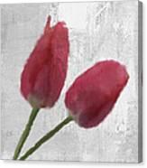Tulip Canvas Print