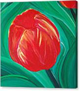 Tulip Diva By Jrr Canvas Print